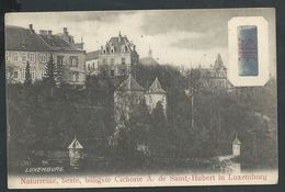 +++ CPA - Luxembourg - Luxemburg - Naturreine ,beste,billigsteCICHORIE A. De SAINT HUBERT - Pub Publicité  // - Luxembourg - Ville