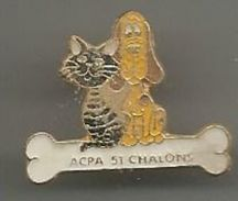 Pins :acpa 51 Chalons  Chat Et Chiens - Animals