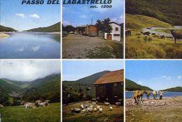 Passo Del Lagastrello - Formato Grande Viaggiata – E 4 - Massa