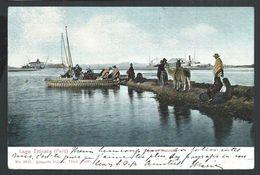 +++ CPA - Etats Unis - PEROU - Lago Titicaca - PERU - Tipos De Naturales  // - Pérou