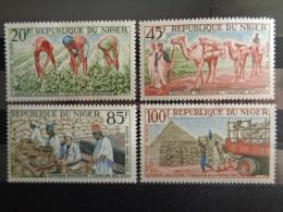NIGER P.A 1963 Y&T N° 31 à 34 ** - CAMPAGNE ARACHIDIERE - Niger (1960-...)