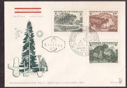 Z66  Austria, Österreich 1962  FDC (Ersttag) - ÖSTERREICHISCHER WALD - FDC