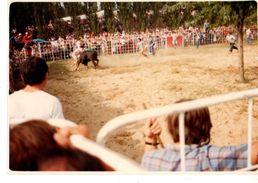 PHOTO----CORRIDA ---course De Vachette---voir 2 Scans - Sport