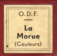 1 Film Fixe LA MORUE Couleur (ETAT TTB ) - 35mm -16mm - 9,5+8+S8mm Film Rolls