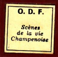 1 Film Fixe SCENES DE LA VIE  EN CHAMPAGNE (ETAT TTB ) - Bobines De Films: 35mm - 16mm - 9,5+8+S8mm