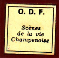 1 Film Fixe SCENES DE LA VIE  EN CHAMPAGNE (ETAT TTB ) - 35mm -16mm - 9,5+8+S8mm Film Rolls