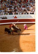 PHOTO----CORRIDA ---40---DAX--arènes De DAX  18 Août  1982---voir 2 Scans - Sport