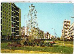 91  MASSY  AU  GRAND  ENSEMBLE  L'  AVENUE  DE  BOURGOGNE  CPM BE  1L649 - Massy