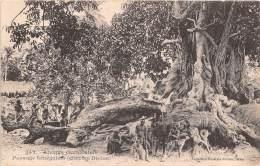 SENEGAL Afrique Occidentale Paysage Senegalais Chez Les Diolas 15(scan Recto-verso) MA327 - Sénégal