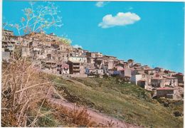 A045 TOLVE POTENZA PANORAMA 1970 CIRCA - Potenza