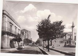 A055 ALTAMURA BARI VIALE REGINA MARGHERITA 1960 CIRCA ANIMATA - Altamura