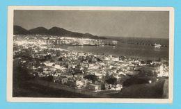 CPSM Moutarde Amora - Canaries - Las Palmas (Vue De Nuit) - Werbepostkarten