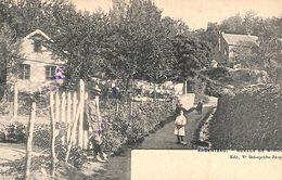 Argenteau - Ruelle De Wihou (animée, Edit Ve Delsupexhe, 1908) - Visé