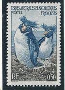 TAAF 1956 - YT N°2 - 50c. - Faune - Manchots Gorfous - NEUF** TTB Etat - Terres Australes Et Antarctiques Françaises (TAAF)