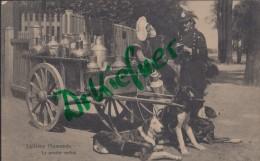 Feldpost: 2. Eskadron Husaren-Regt. Nr. 9, Antwerpen 22.12.1915, Motiv: Flämische Milchhändlerin, Laitière - 1914-18