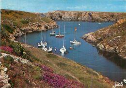 56  Belle Ile En Mer  L' Anse De Ster Ouen       Y 535 - Belle Ile En Mer