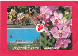 Modern Multi View Post Card Of Greetings From Singapore,B34. - Singapore