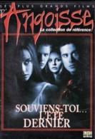DVD Souviens Toi L Ete Dernier  ( Etat: TTB Port 110gr Ou 30 Gr) - Horreur