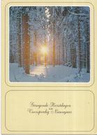 Fantasiekaart - Prettige Kerstdagen En  Voorspoedig Nieuwjaar - Color/kleur - Gebruikt/gebraucht/used - Kerstmis