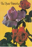 Fantasiekaart - Van Harte Beterschap  - Color/kleur - Gebruikt/gebraucht/used - Wensen En Feesten