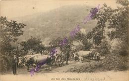 30.  AU COL DES MOUREZES . ( Région Du VIGAN ) .  CPA Animée . - France