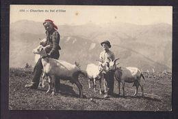 CPA SUISSE - VAL D' ILLIEZ - Chevriers Du Val D'Illiez - TB PLAN Jeunes Avec Les Chèvres - VS Wallis