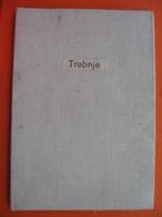 Trebnje - Topographical Maps