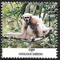 India - MNH - Hoolock Gibbon (Hoolock Hoolock) - Apen