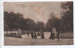 GIBRALTAR - ALAMEDA GARDENS - Gibilterra