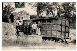 LOT  DE 35 CARTES  POSTALES  ANCIENNES  DIVERS  FRANCE  N29 - Cartes Postales