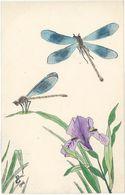 Cpa Fantaisie - Cpa Peinte Main, Signée Paul C. 1906 – Libellules    ( FA ) - Fancy Cards