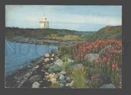 096891 FINLAND LIGHTHOUSE Kansankulttuuri Old Photo PC - Lighthouses