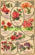 CPA LANGAGE DES FLEURS SERIE 1863 KF EDITEURS PARIS LANGUAGE OF THE FLOWERS - Sonstige