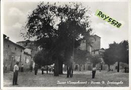 Molise-campobasso-busso Piazza N.santangelo Veduta Molto Animata Anni 50 - Italia