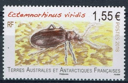 French Antarctic (FSAT), Insect, Ectemnorhinus Viridis, 2018, MNH VF - French Southern And Antarctic Territories (TAAF)