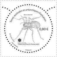 TAAF 2018 -  Insecte De Crozet Mnh - Ungebraucht