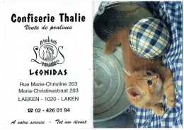 Calendrier. Bruxelles/Laeken. Confiserie Thalie. Pralines Léonidas. Rue Marie-Christine. Chat. 2005. - Calendars