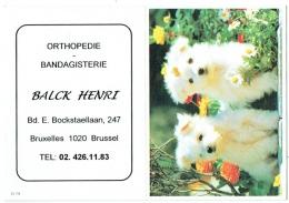 Calendrier. Bruxelles/Laeken. Orthopédie  Balck. Bd.Bockstael. Chiens. 2003. - Calendars