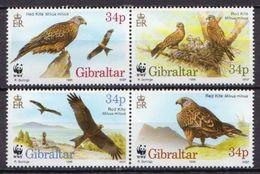 Gibraltar MNH Set - Eagles & Birds Of Prey