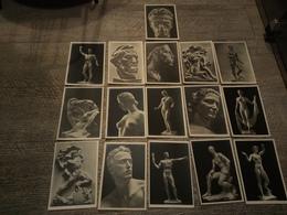 Lot 16 Cartes Sculptures De Arno Breker Berlin Sculpteur Allemand Art - Skulpturen