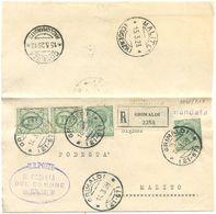 1928 LEONI C. 5x2+FLOREALE C. 25 COPPIA PIEGO RACC. GRIMALDI 14.3.28 A MALITO SPLENDIDA MONOCROMA VERDE (8848) - Storia Postale