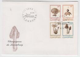 LUXEMBOURG 1991 MUSHROOM CHAMPIGNON FDC - Champignons