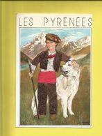 Carte Postale Brodée  D'un Petit Berger En Costume Bigourdan Et Son Chien Des Pyrénées Carte écrite Le 15 05 1991 - France