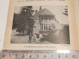 Villa Miomir Semmering Austria Print Engraving Gravour 1927 - Stiche & Gravuren