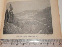 Pinkenkogel Semmering Austria Print Engraving Gravour 1927 - Stiche & Gravuren