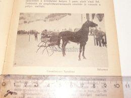 Gasselrennen Spital Horse Pferd Schlitten Ski Sky Semmering Austria Print Engraving Gravour 1927 - Stiche & Gravuren