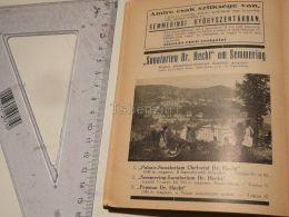 Apotheke Sanatorien Dr. Hecht Pension Semmering Austria Print Engraving Gravour 1927 - Stiche & Gravuren