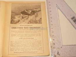 Schneeberg Hotel Schneeberghotel Semmering Austria Print Engraving Gravour 1927 - Stiche & Gravuren