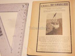 Rax Bahn Austria Print Engraving Gravour 1927 - Stiche & Gravuren