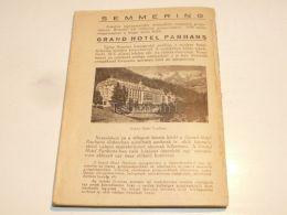 Semmering Grand Hotel Panhans Austria Print Engraving Gravour 1927 - Stiche & Gravuren